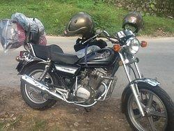 Hue Easy Rider