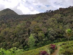 Northcove Cabana is situated right next to Horton Plains National Park.