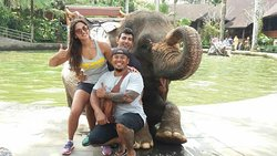 Fantastic elephant riding in BALI
