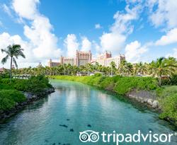 Grounds at The Cove at Atlantis