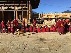 monks at gangtey monastry