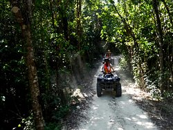 Wheelie Trails ATV Jungle Tours