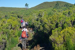 Madeira Explorers - Levada and Leisure Walks