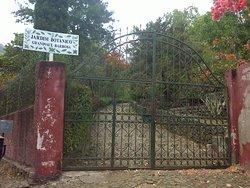 Jardin Botanique de Sao Jorge