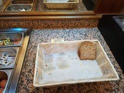 desayuno de 7:30 a10:00, a las 8am para 3 personas, dos trozos depan integral