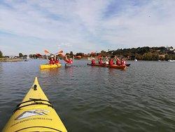 Belgrade Kayak Trip