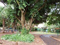 Itanhanga Park