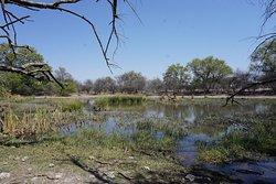 A local touch amongst touristy Botswana