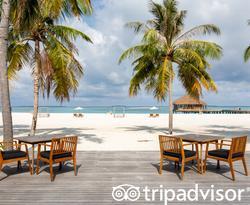Palms Bar at the Noku Maldives
