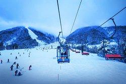 Hakuba Snow Dragon Ski & Snowboard School