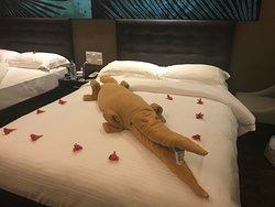 Best hotel in Bentota