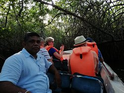 Mangrove Cave River Safari