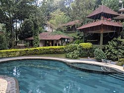 Excellent stay in Thekkady