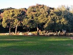 Raanana Park - Picture No. 44 - by israroz