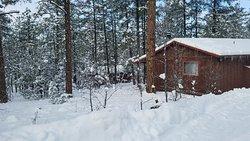 Winter wonderland!!