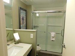 Das Badezimmer mit einer riesigen Dusche.