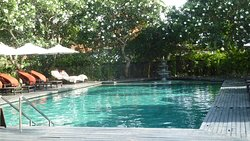 Private Palace pool