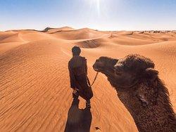 Vraag Ismaël om een kameel en hij neemt je mee.