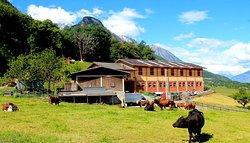 Azienda Agricola Lo Copafen