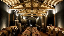 There is no agriturismo without a productive farm. The cellar for the production of organic wines.