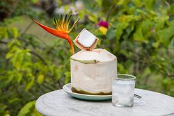 Coconut juice and its great health benefits