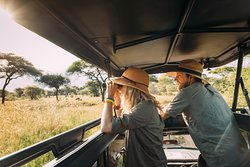 Tanzania #honeymoon safari as private package in luxury lodge or #Luxury Tented Tents.  the trip is private in safari vehicle having Pop Up roof to increase visibility