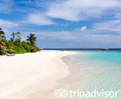 Beach at the Amari Havodda Maldives