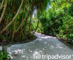 Grounds at the Amari Havodda Maldives