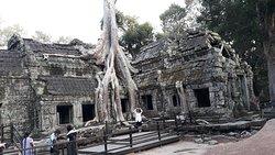Taman Arkeologi Angkor