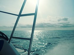 Lodges boat