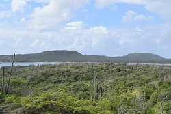 View of Lake Gotomeer on Dos Pos pink hiking trail
