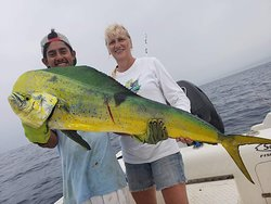Golden fish, a great day!
