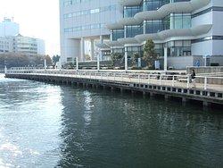 ぷかり桟橋から見た臨港パーク