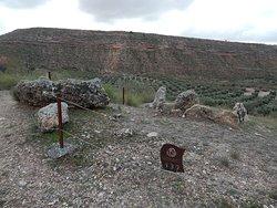 restos dolmen numero 132