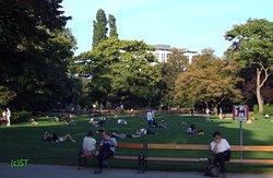 All enjoy the park