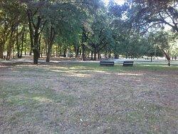 Parque Urbano Sara Moreira