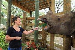 Tampa's  ZooQuarium  Ticket