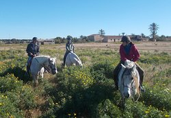 Riding stable El Refugio