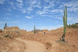 Panorámica desierto rojo