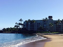 Swim and snorkel in the ocean right out front! - Condominium Rentals Hawaii