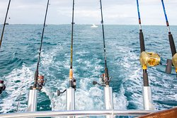 We offer fishing charters in Cayman Islands