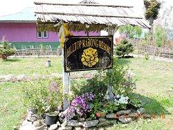 Wonderful Resort within budget
