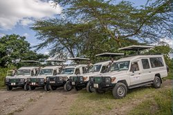 Enjoy safaris with excellent guides from shidolya