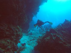 Cancun Diving College