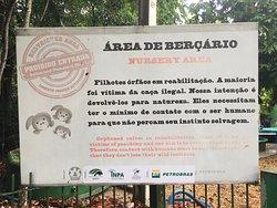 Bosque da Ciencia information sign