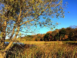 Elm Creek Park Reserve - Fall Afternoon