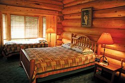 Wolf suite overlooks inlet from Thorne Bay, Alaska