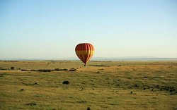 Balloon Safari in Masai Mara National Reserve
