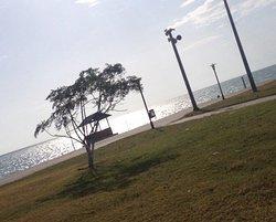 Halk plajı ve park