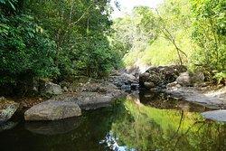 Natural pool in Sierra Brook